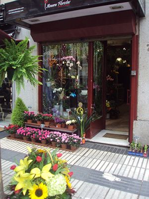 tienda Ainara Floristas