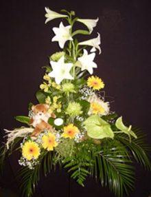 Centro nacimiento lilium