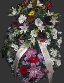 Corona Multifloral