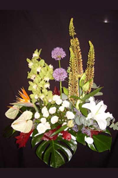 Centro Paisaje Floral