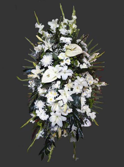 Palma funeraria Blanca