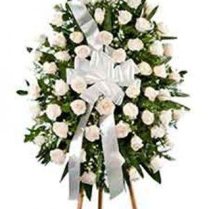 Palma rosas blancas