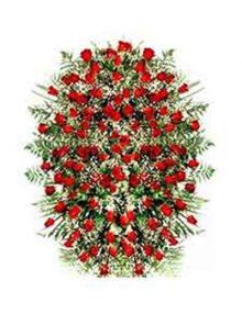 Palma rosas