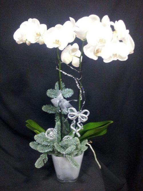 Centro orquídeas navideño