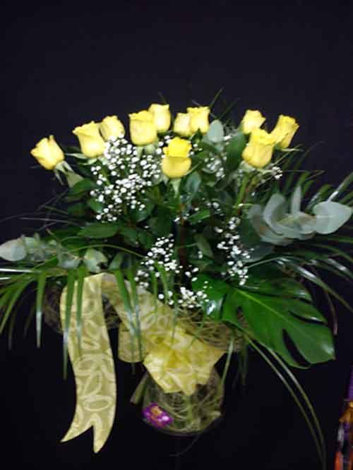 12 Rosas amarillas - Peluche de regalo