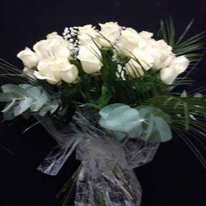 112 rosas blancas peluche de regalo