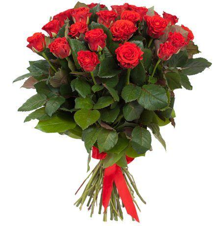 34dd07c620930 Rosas rojas tallo largo enviar rosas madrid envio gratis jpg 450x460 De rosas  rojas gratis