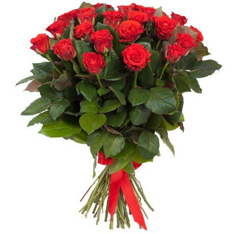 1 Rosas rojas tallo largo