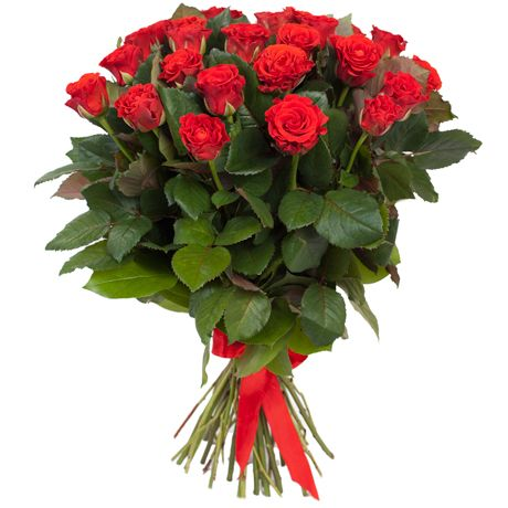 12 Rosas rojas Versace